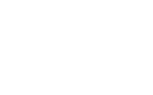 Platvoet coaching & training